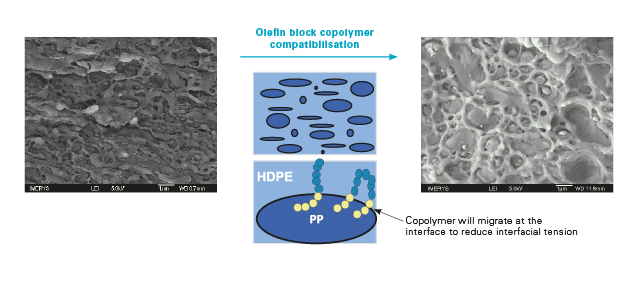SEM photographs showing compatibilization with OBC
