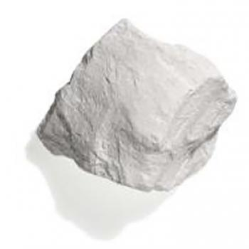 Diatomaceous earth rock